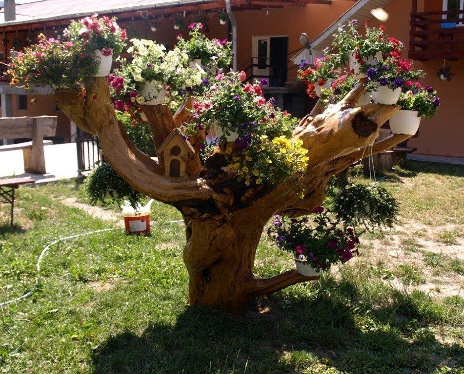 Сухое дерево с подвесными кашпо