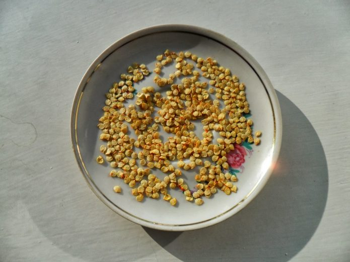 Подсушивание семян