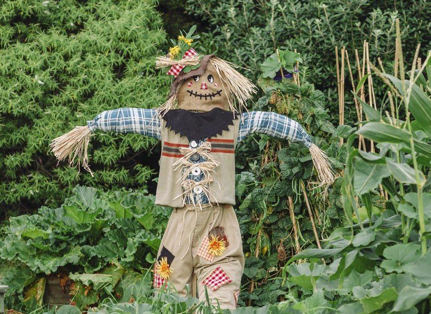 каркас для огородного пугала