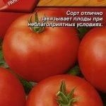 Семена томата Москвич
