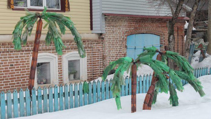 Пальмы с простыми стволами