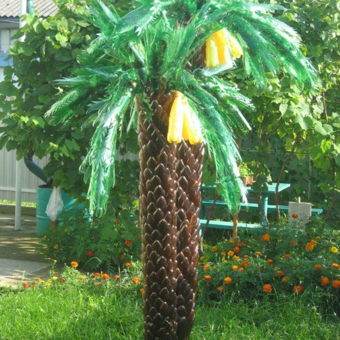 Пальма с плодами бананов