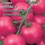 Семена томатов Непас 2