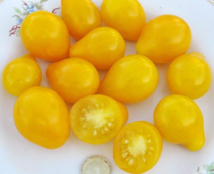 Плоды томата Медовая капля