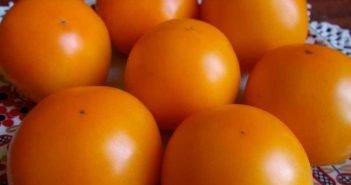 томат царская ветка