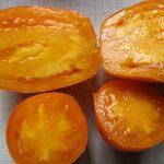 Форма плода сорта Медовый спас в виде капли