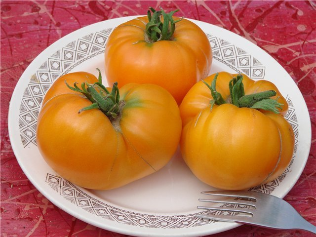 Урожай томата Медовый спас