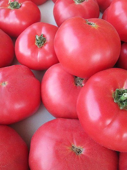 Плоды томата Малиновый гигант