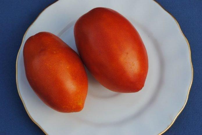 Плоды томата Сибирская тройка