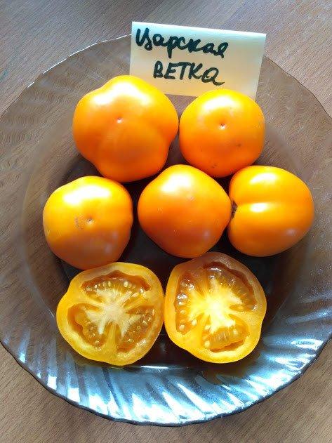 Плоды томата Царская ветка в разрезе