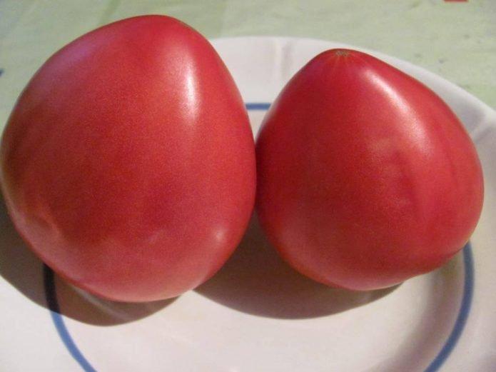 Плоды томата Тяжеловес Сибири