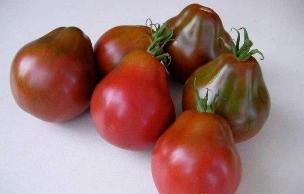 Плоды томата Груша чёрная