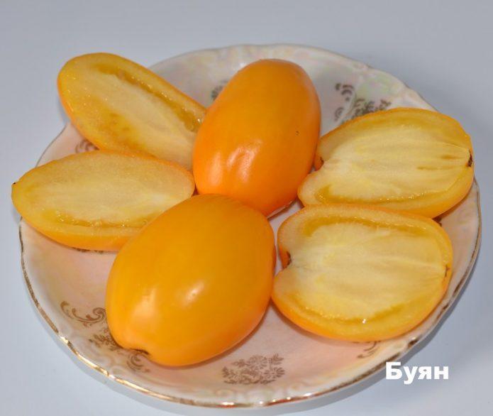 Томат Буян жёлтый