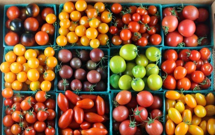 Ассортимент томатов черри