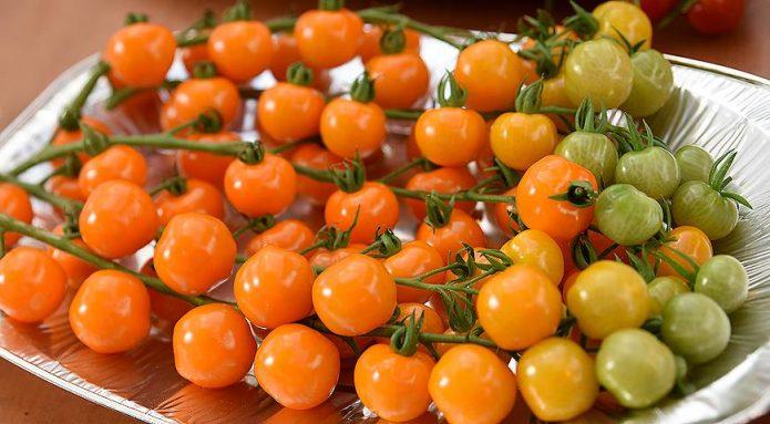 Томат Оранжевая гирлянда