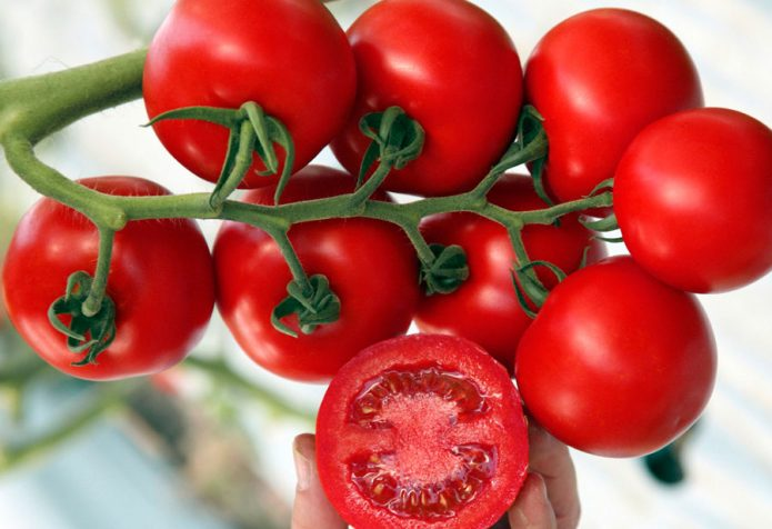 Зрелые томаты в кисти