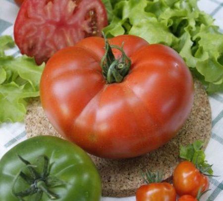 Биф-томат