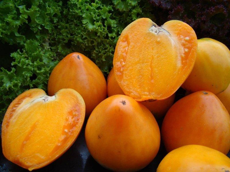Томат медовый спас характеристика и описание сорта урожайность с фото