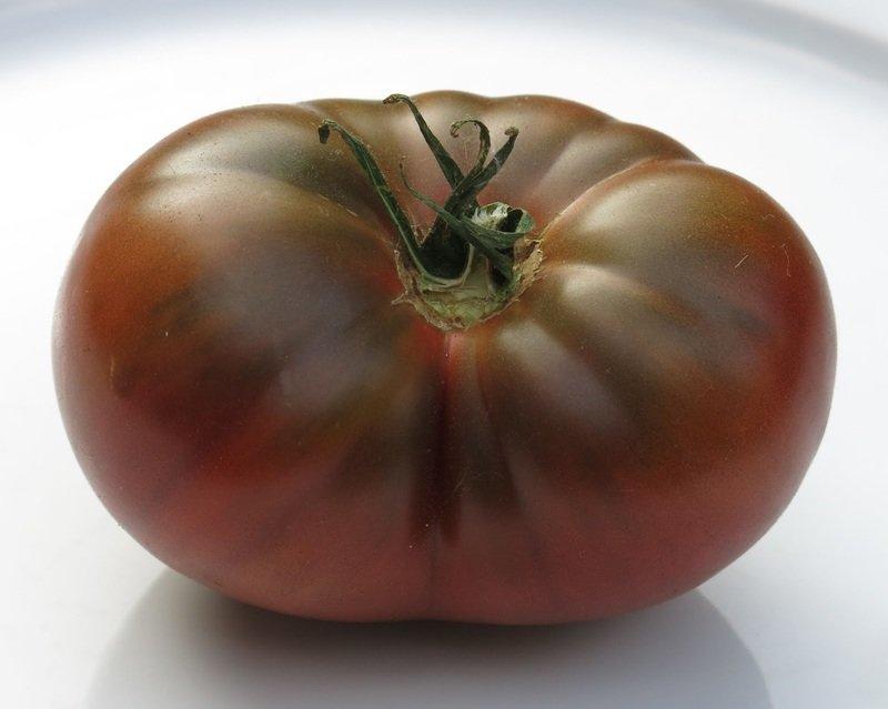 Томат Шоколадка F1: характеристика и описание сорта, отзывы тех кто сажал помидоры об их урожайности, фото куста