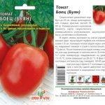 Семена томата Боец от компании «Семена Алтая»