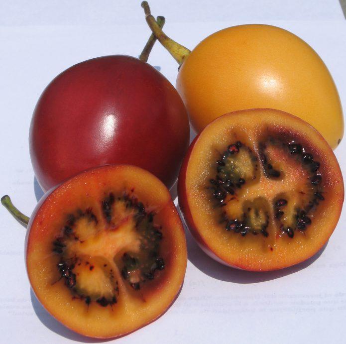 Плоды цифомандры разрезанные