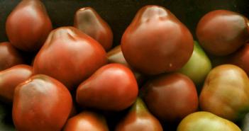 груша черная томат