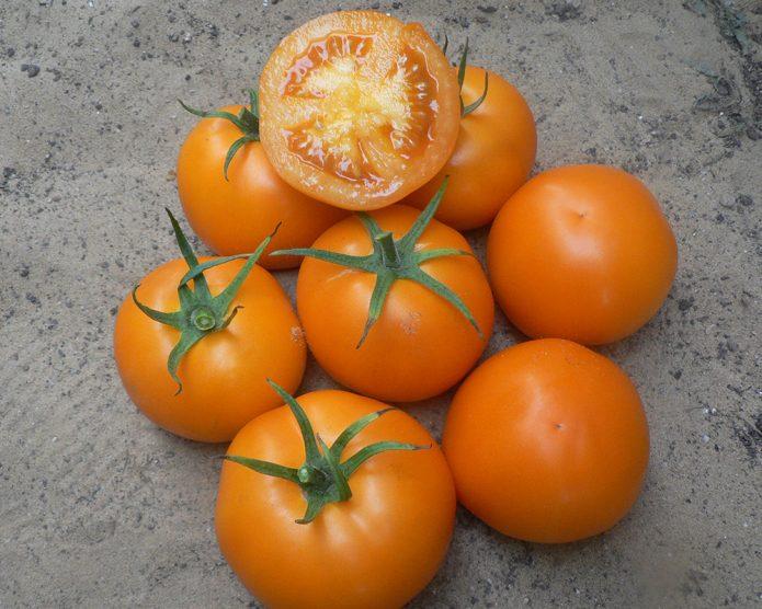 Оранжевоплодные томаты