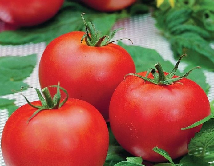 Плоды томата Полфаст