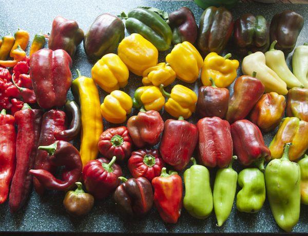 Что нужно знать о культивировании перца