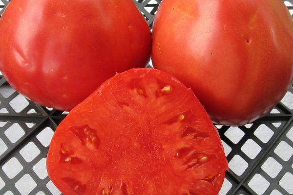 Плод томата Сердце буйвола в разрезе