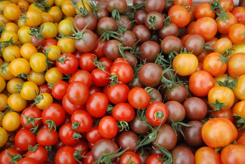 Томат Зимняя вишня характеристика и описание сорта урожайность с фото