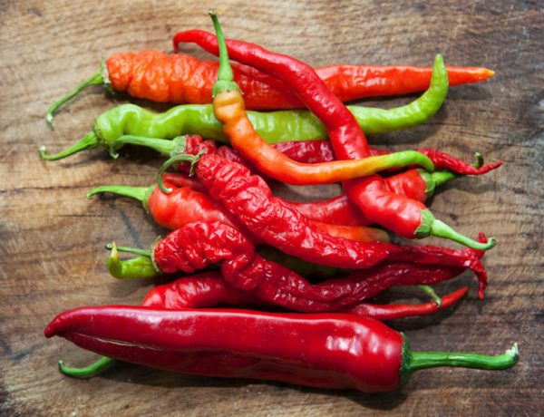 Остросюжетный овощ: лучшие сорта горького перца