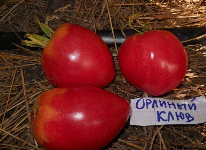 Плоды томата Орлиный клюв