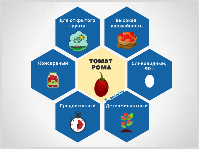 инфографика сорта томата Рома