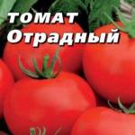 Томат Отрадный