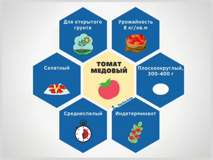инфографика томат Медовый