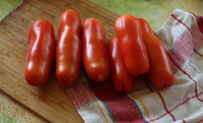 Плоды томата Аурия