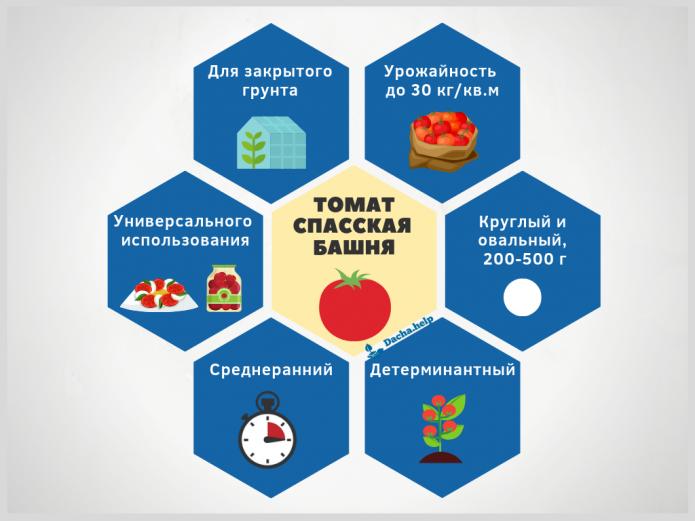 инфографика томат Спасская башня