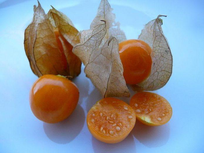 Плоды физалиса