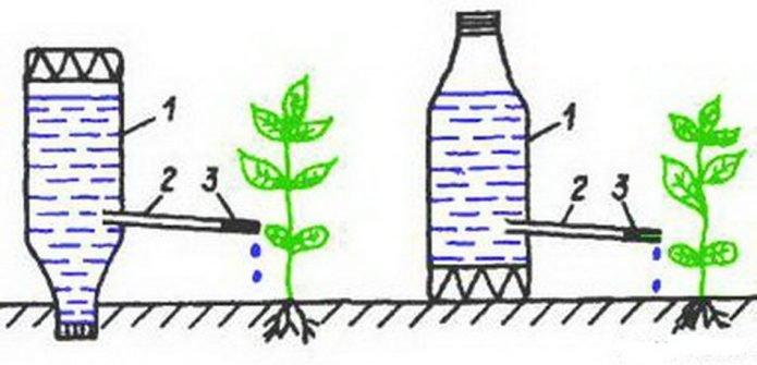 Бутылочный полив