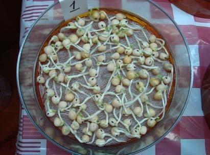 Проросшие семена гороха в тарелке