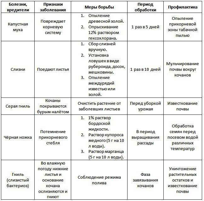 Профилактика болезней и защита от вредителей