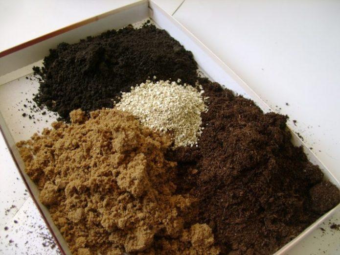 Грунт для выращивания рассады баклажанов