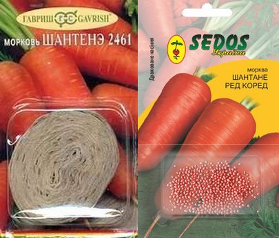 Семена моркови на ленте и дражже