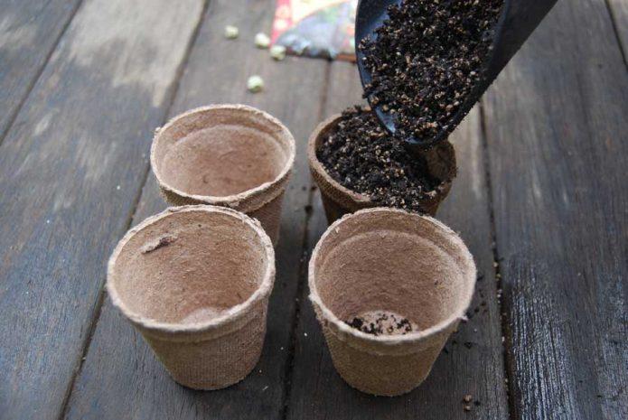 Рассадные стаканчики