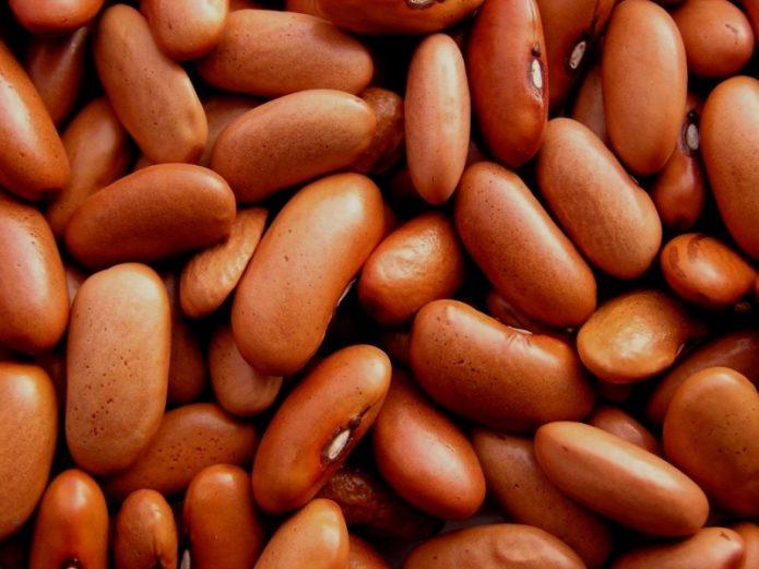 Семена спаржевой фасоли