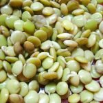 Проращивание семян баклажанов