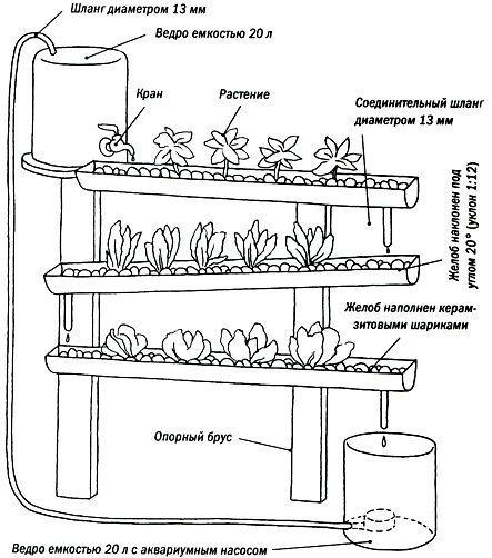 Схема простейшей гидропонной установки