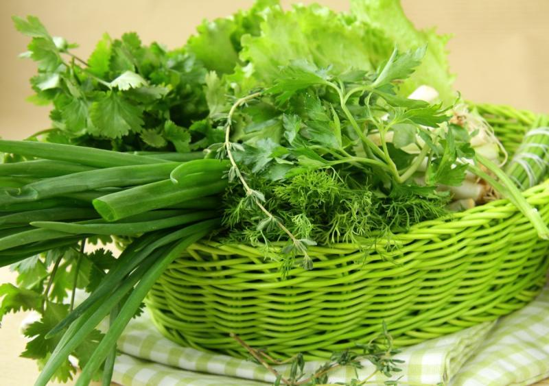 Семена зелени для огорода