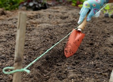 Бороздки для посадки фасоли